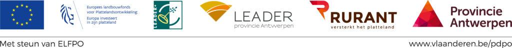 banner Leader
